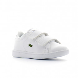 LACOSTE - CARNABY EVO